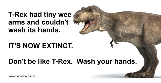 Don T Be Like T Rex Wee Ginger Dug