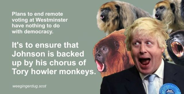 howlermonkeys